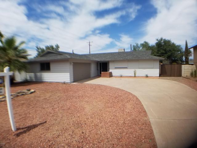 104 E Ellis Drive, Tempe, AZ 85282 (MLS #5885456) :: Yost Realty Group at RE/MAX Casa Grande