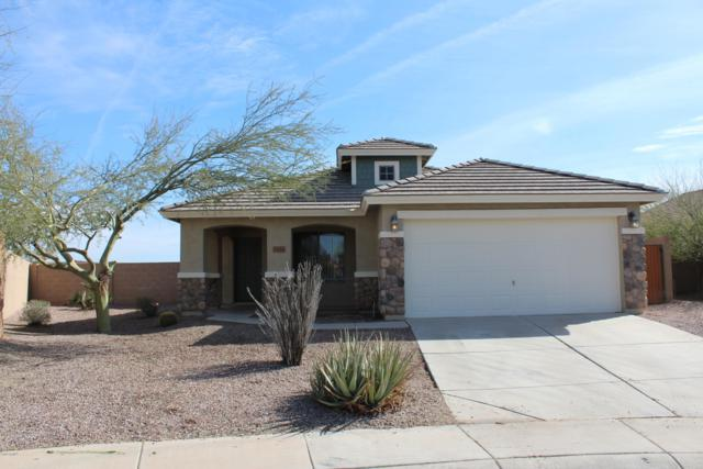 1524 N Maria Lane, Casa Grande, AZ 85122 (MLS #5885491) :: The Garcia Group