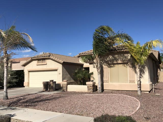 19402 E Reins Road, Queen Creek, AZ 85142 (MLS #5885514) :: Yost Realty Group at RE/MAX Casa Grande