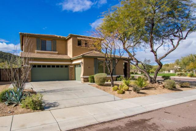 26448 N 85TH Drive, Peoria, AZ 85383 (MLS #5885516) :: Power Realty Group Model Home Center