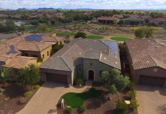 28233 N 128TH Drive, Peoria, AZ 85383 (MLS #5885546) :: Power Realty Group Model Home Center