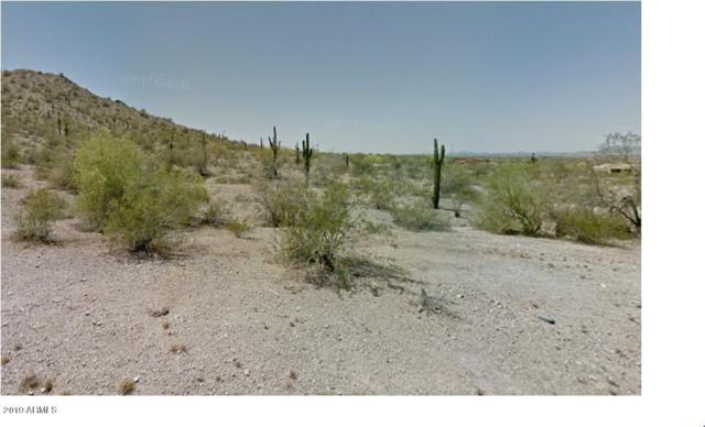 9520 S Krista Drive, Goodyear, AZ 85338 (MLS #5885547) :: Nate Martinez Team