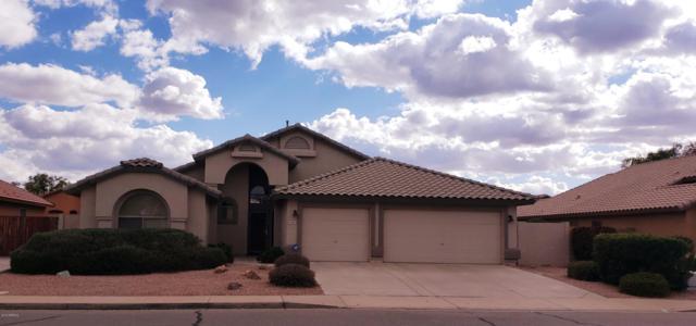 2193 E Kempton Road, Chandler, AZ 85225 (MLS #5885549) :: Power Realty Group Model Home Center