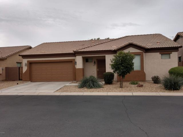 8985 W Saint John Road, Peoria, AZ 85382 (MLS #5885552) :: Power Realty Group Model Home Center