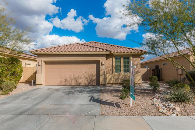 15513 N Poppy Street, El Mirage, AZ 85335 (MLS #5885555) :: Kelly Cook Real Estate Group
