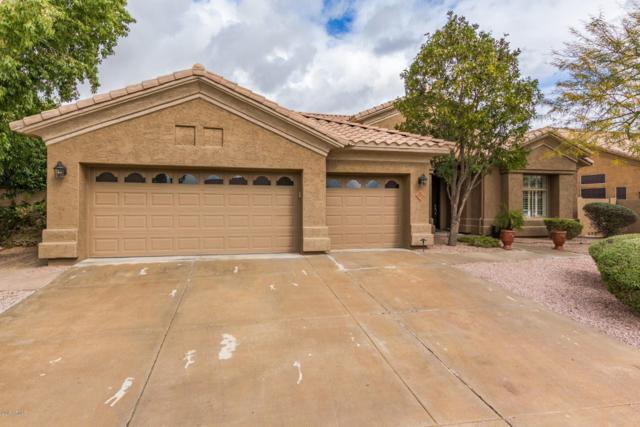 5550 E Friess Drive, Scottsdale, AZ 85254 (MLS #5885561) :: Power Realty Group Model Home Center