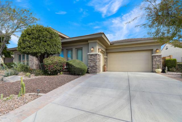 30593 N 126TH Lane, Peoria, AZ 85383 (MLS #5885576) :: Power Realty Group Model Home Center