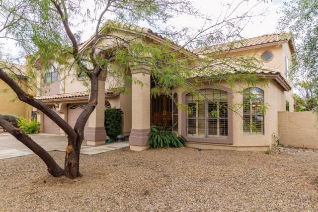 5113 E Grandview Road, Scottsdale, AZ 85254 (MLS #5885580) :: Power Realty Group Model Home Center
