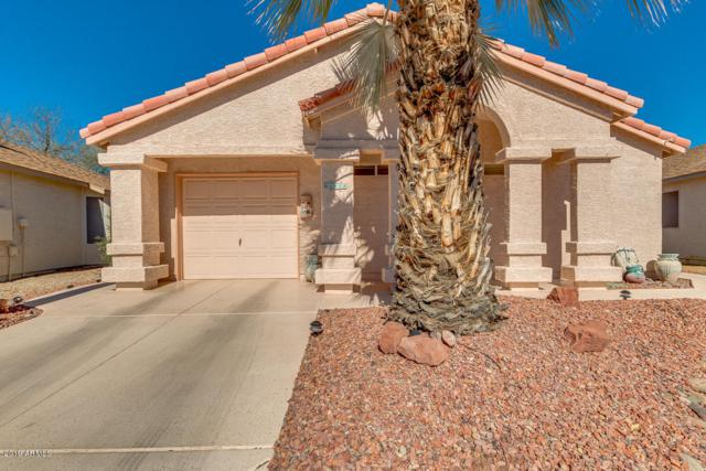1950 E Winged Foot Drive, Chandler, AZ 85249 (MLS #5885581) :: Power Realty Group Model Home Center