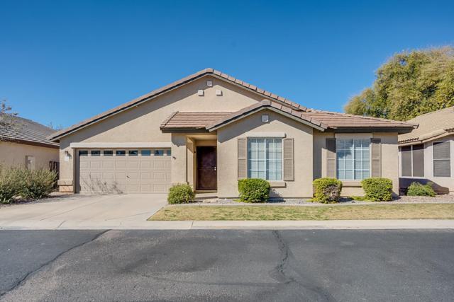 1656 N Serina Street, Mesa, AZ 85205 (MLS #5885582) :: Power Realty Group Model Home Center