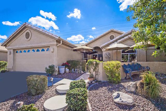 10225 E Stoney Vista Drive, Sun Lakes, AZ 85248 (MLS #5885591) :: RE/MAX Excalibur