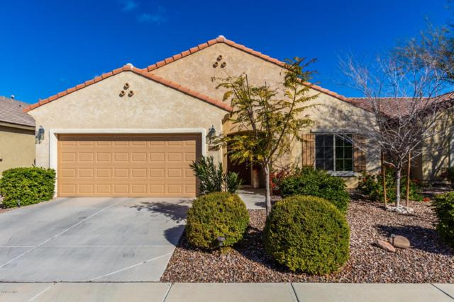 5768 W Admiral Way, Florence, AZ 85132 (MLS #5885592) :: Power Realty Group Model Home Center