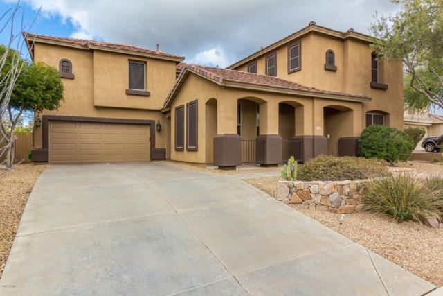 4248 E Desert Forest Trail, Cave Creek, AZ 85331 (MLS #5885607) :: Yost Realty Group at RE/MAX Casa Grande