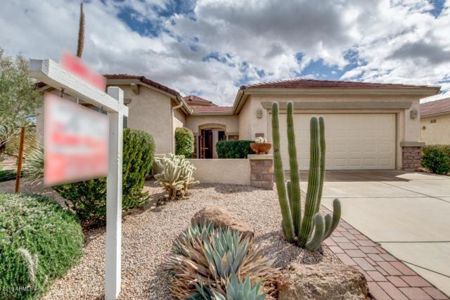 32269 N Larkspur Drive, San Tan Valley, AZ 85143 (MLS #5885610) :: Power Realty Group Model Home Center