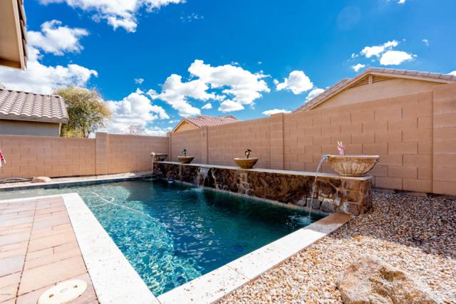 3147 W Silver Creek Drive, Queen Creek, AZ 85142 (MLS #5885631) :: The W Group