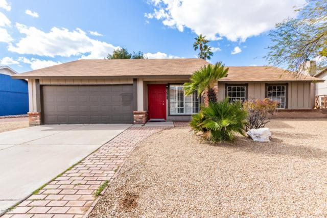 1428 N Matlock, Mesa, AZ 85203 (MLS #5885663) :: CC & Co. Real Estate Team