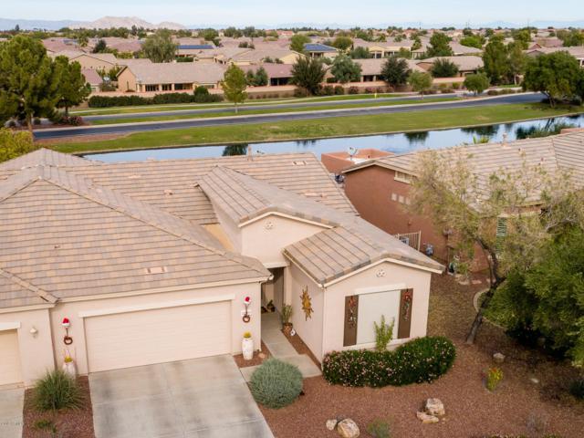 42498 W Jawbreaker Drive, Maricopa, AZ 85138 (MLS #5885688) :: Yost Realty Group at RE/MAX Casa Grande