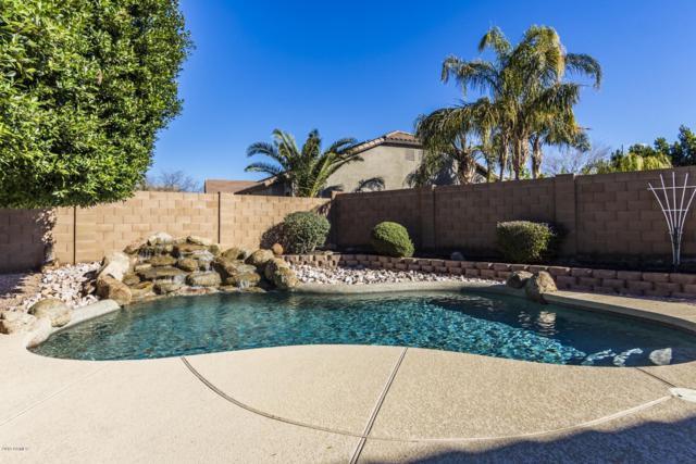 7410 W Briles Road, Peoria, AZ 85383 (MLS #5885755) :: Yost Realty Group at RE/MAX Casa Grande