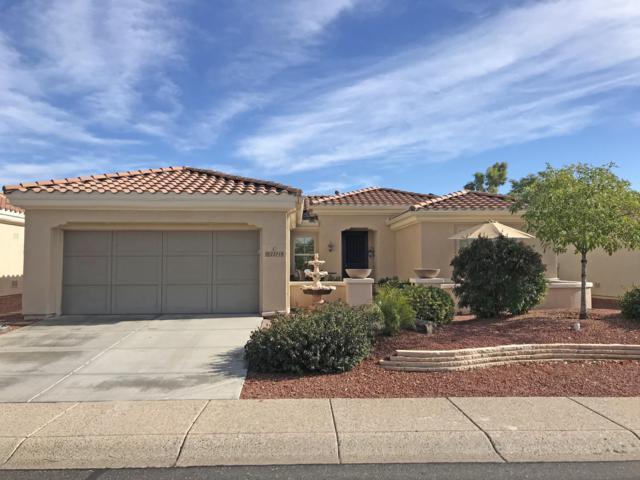 22719 N Pico Drive, Sun City West, AZ 85375 (MLS #5885784) :: Santizo Realty Group
