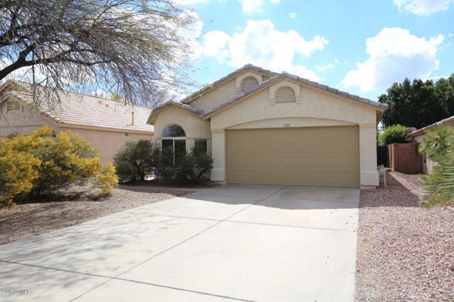 923 E Mohawk Drive, Phoenix, AZ 85024 (MLS #5885790) :: Yost Realty Group at RE/MAX Casa Grande