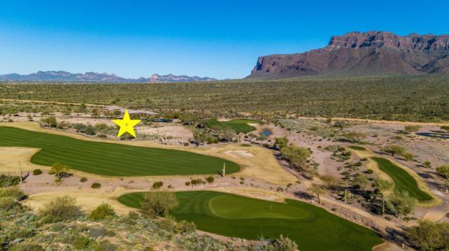 9377 E Canyon View Trail, Gold Canyon, AZ 85118 (MLS #5885959) :: Realty Executives