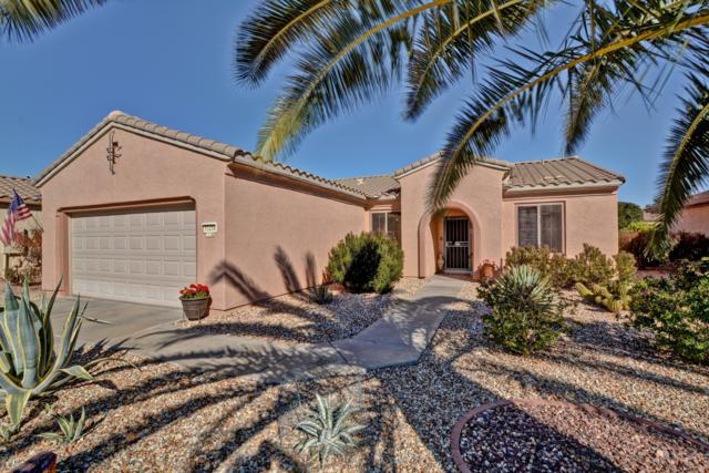 15258 W Kidneywood Lane, Surprise, AZ 85374 (MLS #5885994) :: The Everest Team at My Home Group