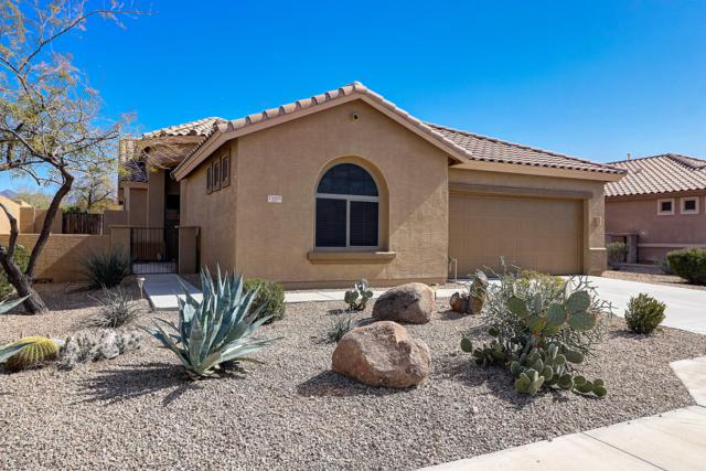 13205 S 176TH Avenue, Goodyear, AZ 85338 (MLS #5885997) :: Kortright Group - West USA Realty