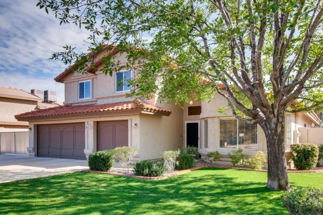 4621 E Nisbet Road, Phoenix, AZ 85032 (MLS #5886005) :: Yost Realty Group at RE/MAX Casa Grande