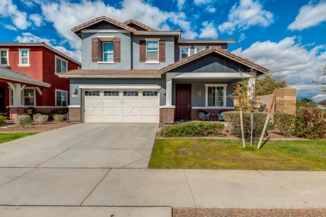 7264 E Olla Avenue, Mesa, AZ 85212 (MLS #5886007) :: The Bill and Cindy Flowers Team