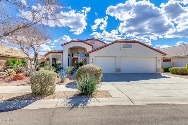 16613 W Adams Street, Goodyear, AZ 85338 (MLS #5886012) :: Kortright Group - West USA Realty
