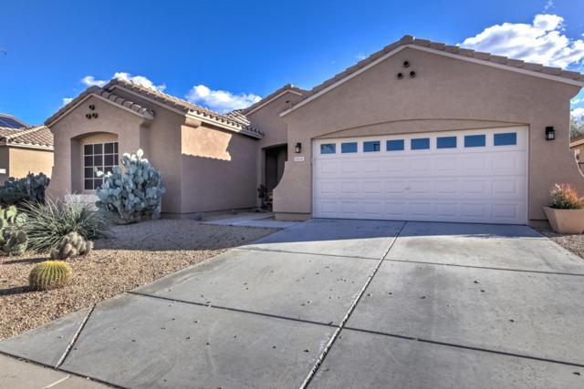 14141 W Crocus Drive, Surprise, AZ 85379 (MLS #5886052) :: CC & Co. Real Estate Team