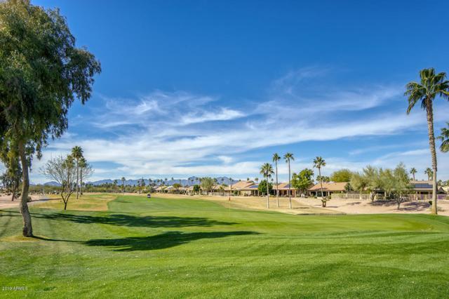 15868 W Edgemont Avenue, Goodyear, AZ 85395 (MLS #5886071) :: Kortright Group - West USA Realty