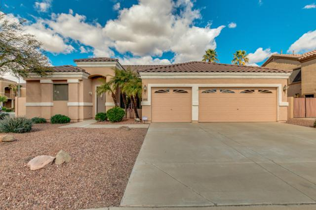 5430 W Karen Drive, Glendale, AZ 85308 (MLS #5886095) :: Yost Realty Group at RE/MAX Casa Grande