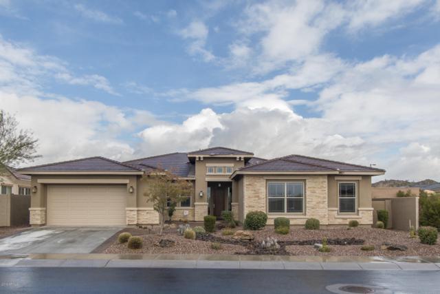 18102 W Desert Sage Drive, Goodyear, AZ 85338 (MLS #5886106) :: CC & Co. Real Estate Team