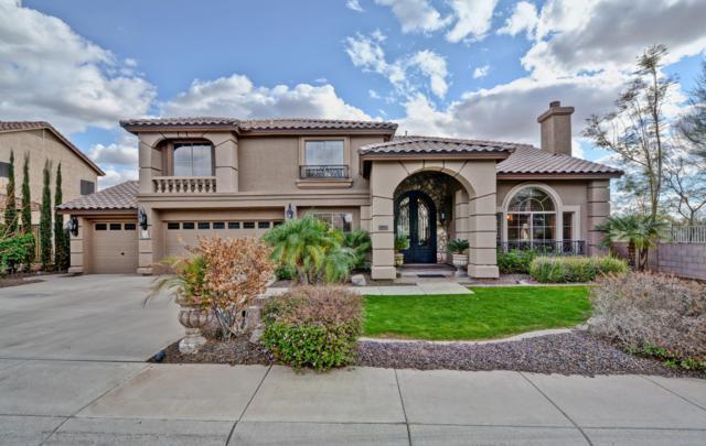 4505 E Blue Sky Drive, Cave Creek, AZ 85331 (MLS #5886117) :: Yost Realty Group at RE/MAX Casa Grande