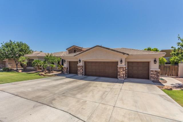 4191 S Purple Sage Drive, Chandler, AZ 85248 (MLS #5886124) :: Yost Realty Group at RE/MAX Casa Grande