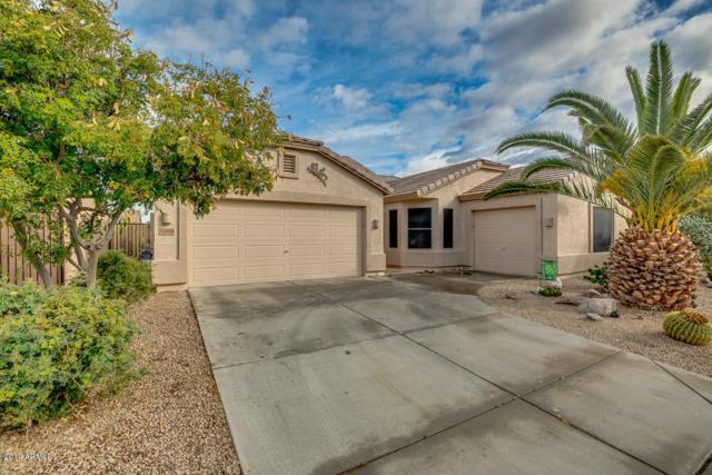 43486 W Mccord Drive, Maricopa, AZ 85138 (MLS #5886138) :: Yost Realty Group at RE/MAX Casa Grande