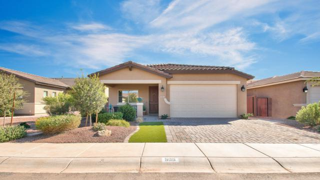 505 W Flame Tree Avenue, Queen Creek, AZ 85140 (MLS #5886150) :: Revelation Real Estate
