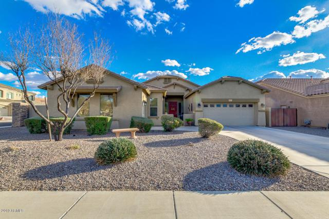 2473 E Ebony Drive, Chandler, AZ 85286 (MLS #5886205) :: Yost Realty Group at RE/MAX Casa Grande