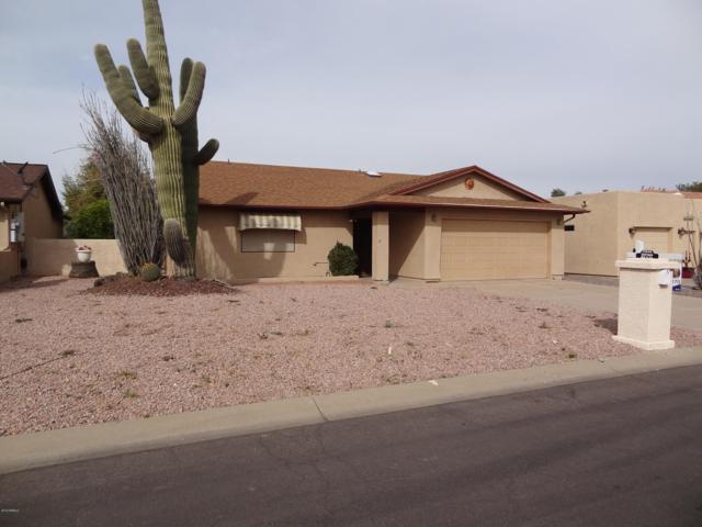 25646 S Parkside Drive, Sun Lakes, AZ 85248 (MLS #5886214) :: RE/MAX Excalibur