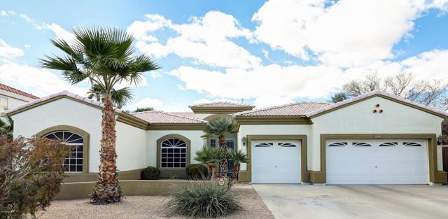 18164 N 63rd Lane W, Glendale, AZ 85308 (MLS #5886226) :: The Garcia Group