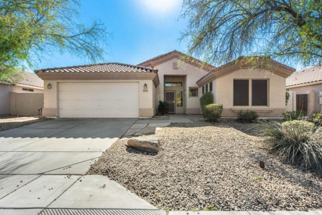 9743 E Kiowa Avenue, Mesa, AZ 85209 (MLS #5886249) :: The Kenny Klaus Team