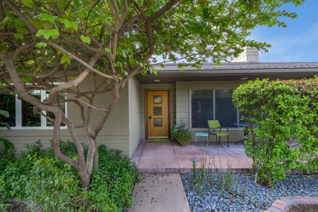 1214 S Maple Avenue, Tempe, AZ 85281 (MLS #5886251) :: Yost Realty Group at RE/MAX Casa Grande