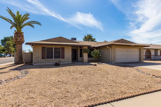 5727 W Mescal Street, Glendale, AZ 85304 (MLS #5886258) :: The Results Group