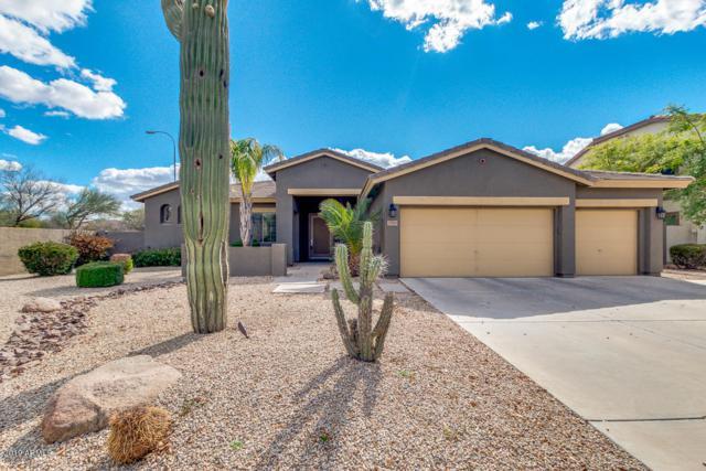 2349 E Kaibab Place, Chandler, AZ 85249 (MLS #5886266) :: The Daniel Montez Real Estate Group