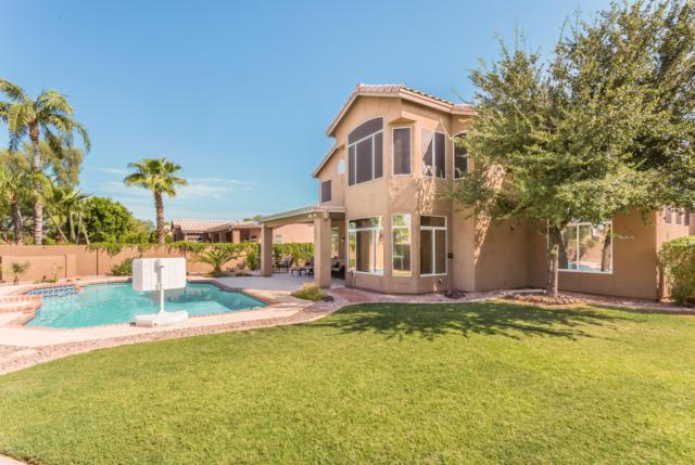 22612 N 73RD Drive, Glendale, AZ 85310 (MLS #5886275) :: The Garcia Group