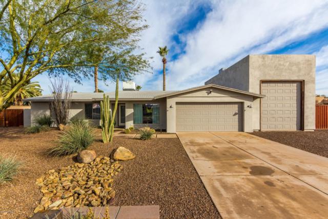 5346 E Winchcomb Drive, Scottsdale, AZ 85254 (MLS #5886336) :: Yost Realty Group at RE/MAX Casa Grande