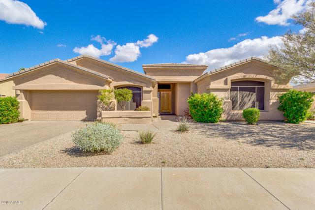 17706 W Ocotillo Avenue, Goodyear, AZ 85338 (MLS #5886363) :: Kortright Group - West USA Realty