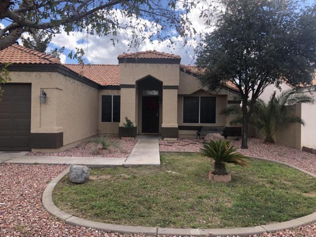 8553 W Windsor Avenue, Phoenix, AZ 85037 (MLS #5886383) :: Yost Realty Group at RE/MAX Casa Grande