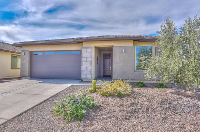 29738 N 132ND Drive, Peoria, AZ 85383 (MLS #5886404) :: Conway Real Estate